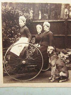 York, Reino Unido.Sesvicio de la familia Navarro 1895.