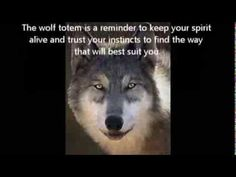 Totem Tuesday 6 - The Wolf - YouTube