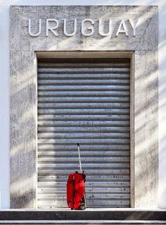 """Agendarte boletin digital: Con """"Global Myopia""""  Marco Maggi sorprenderá a los..."""