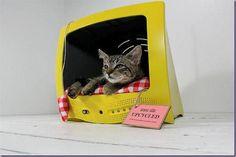 Artesanato Reciclagem (Blog): Transforme sua televisão velha em morado do seu felino