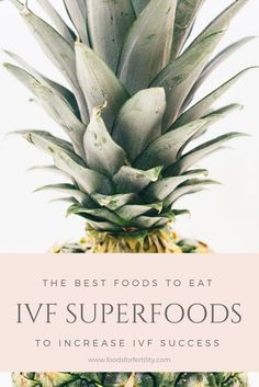 IVF Superfoods: The Best Foods to Eat to Increase . IVF Superfoods: The Best Foods to Eat to Increase IVF Success – Add these IVF Superfoods to your IVF Diet to increase your IVF Success rate and increase your chances for a successful embryo transfer. Pregnant Mom, Getting Pregnant, Superfoods, Ivf Success Rates, Ivf Success Tips, Frozen Embryo Transfer, Fertility Foods, Fertility Help, Fertility Yoga