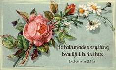 Little Birdie Blessings: Scripture Thursday ~ Beautiful in His Time ~ Ecclesiastes 3:11