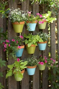 <3 colorful pots hanging on a rustic fence