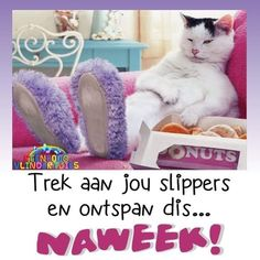 Good Morning Messages, Good Morning Wishes, Goeie Nag, Goeie More, Weekend Quotes, Afrikaans, Van, Mornings, Amanda