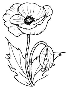 Flower Embroidery Designs, Flower Patterns, Embroidery Patterns, Learn Embroidery, Hand Embroidery, Poppy Drawing, Flower Sketches, Flower Coloring Pages, Fabric Painting