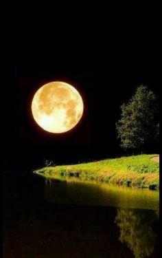 Thanks for visiting Beautiful Mother Nature. Beautiful Moon, Beautiful World, Beautiful Places, Beautiful Pictures, Stars Night, Good Night Moon, Moon Moon, Full Moon, Shoot The Moon