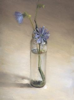 chicory in glass jar