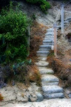 Stairway Foliage  8x12 Fine Art Photographic by barbaragordon, $15.00/looks like cement bag steps