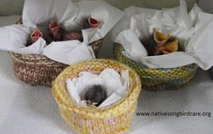 Knit nests for rescued nestlings Instructions here http://nativesongbirdcare.org/uploads/How_to_Make_Knit_Nests_.pdf