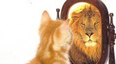 Como melhorar a auto-estima