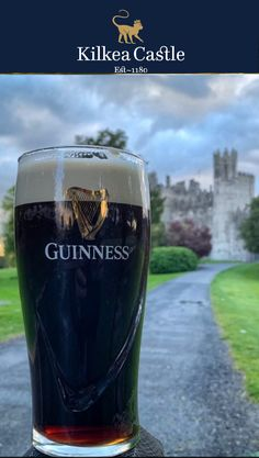 That's a pretty large Guinness!