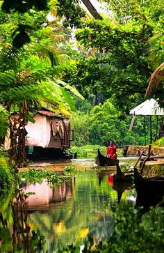 Kerala backwaters, India best place I have visited