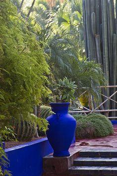 Jacques Majorelle Gardens, in Marrakech, Morocco. Garden Beds, Garden Art, Garden Design, Marrakech Gardens, Moroccan Garden, Narrow Garden, Morocco Travel, Flowers Perennials, Outdoor Landscaping