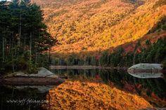 Folger-peak-fall-foliage-on-beaver-pond (1)