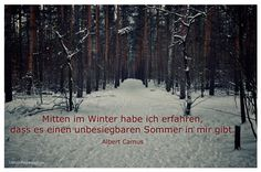 Mein Papa sagt...  Mitten im Winter habe ich erfahren, dass es einen unbesiegbaren Sommer in mir gibt.  Albert Camus    Weisheiten und Zitate TÄGLICH NEU auf www.MeinPapasagt.de