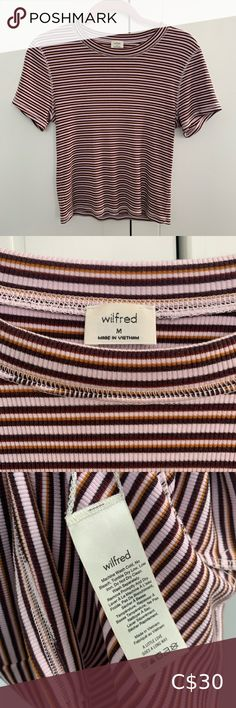 Wilfred HELAINE T-shirt Cute cropped, striped crew-neck Aritzia top. Fabric is robbed, soft, & stretchy with pink & brown stripes. Aritzia Tops Tees - Short Sleeve Pink Brown, Crew Neck, Stripes, Tees, Sleeve, Cute, Fabric, T Shirt, Closet