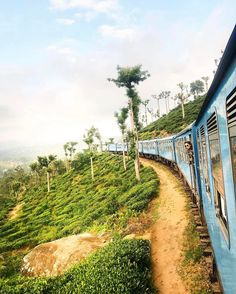 By @2aroundtheglobe // ✧ The train from Ella to Kandy. According to the books, it is one of the most beautiful train rides in the world. We can definitely confirm that. What is your favorite train ride? ✧ Watch our daily 'story' for roadtrip video's! | Sri Lanka.