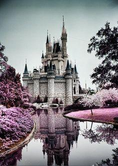 beautiful : )