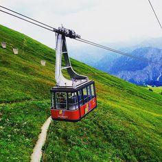 Sonntagsausflug im Allgäu #bergbahnen#seilbahn#unserbayern#edelweis#bergblumen#wandern#sonntagsausflug#schoeneswetter#blumenmeer#murmeltiere#kuhweiden#gaisen#bergbauern by wieselchen007