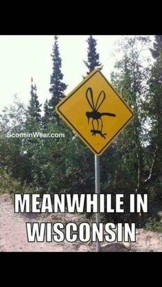 Funny mosquito signs, looks like they are winning this camping battle. Funny Street Signs, Funny Road Signs, Funny Minion Memes, Practical Jokes, Bizarre, Beach Signs, Picture Captions, Funny Fails, Funny Memes