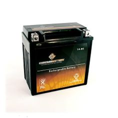 YTX14-BS ATV Battery for HONDA TRX300FW FourTrax 300 4x4 300CC 88-'00 by Chrome Battery. $39.90. Motorcycles also use the oldest and most reliable type of rechargeable battery, the Lead Acid battery. Chrome Battery offers a large inventory of motorcycle batteries to replace your existing battery. AGM Sealed Lead Acid batteries are considered the highest performing battery available on the market today. Each Chrome Battery motorcycle battery is constructed with lead calcium al...