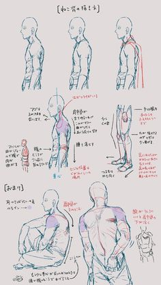 how to draw gore Anatomy Sketches, Body Sketches, Anatomy Art, Anatomy Drawing, Art Sketches, Art Drawings, Body Reference, Drawing Reference Poses, Anatomy Reference