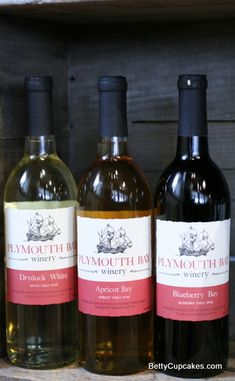 Fruit Wines at Plymouth Bay Winery | BettyCupcakes.com #plymouth #massachusetts #winery