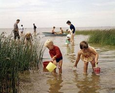 Children trying to catch fish with coloured buckets. The Netherlands, place unknown, 1964.