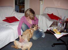 Zdjęcie - Zdjęcia Google Google, Dogs, Animals, Animais, Animales, Animaux, Doggies, Animal, Pet Dogs
