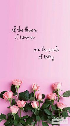 All the flowers of tomorrow, are in the seeds of today!