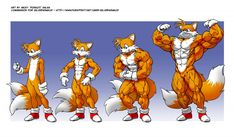 Tails, wat r u doing? by Pokkuti.deviantart.com on @DeviantArt