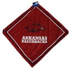Arkansas Razorbacks Cap Bandana Jersey Mesh