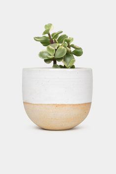 DESCRIPTION This ceramic planter is made from a lightly flecked stoneware sourced in Stoke-on-Trent. Each planter is glazed in semi-translucent...