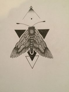 My work.. Insects and geometrical drawing!