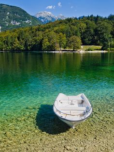Lake Bohinj in Slovenia Your holidays in Slovenia! Contact us on Skype: e-growman or e-mail us: jiznelub@gmail.com