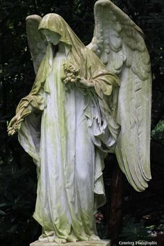 ☫ Angelic ☫ winged cemetery angels and zen statuary - Cemetery Angels, Cemetery Statues, Cemetery Art, Statue Ange, I Believe In Angels, Ange Demon, Fantasy Kunst, Angels Among Us, Angels In Heaven