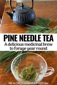 Pine needle tea (or pine tea) is a delicious foraged tea with numerous health benefits. An anti-inflammatory and respiratory remedy, pine needle tea is a terrific addition to your herbal tea rotation. #foraging #herbaltea #herbalism #plantmedicine #naturalremedies