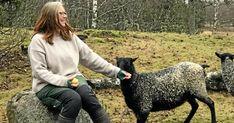 "Så ska Fia göra svensk ull poppis på nytt: ""Två tredjedelar kasseras"" | Land.se Land, Animals, Tips, Ska, Animales, Animaux, Animal, Animais, Counseling"