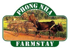 Phong Nha Farmstay | Tailored Adventure Tourism in Real Vietnam!
