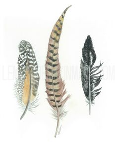 Three Feathers in a row by Lemonademakinmama on Etsy