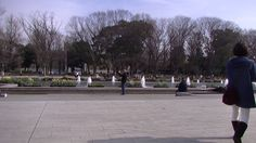 #japan#japon#travel#ueno park