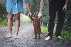 Meet This Couple With Their Newborn Dog | Elisha Minnette Photography