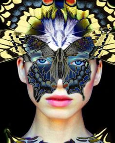 Madam Butterfly by Lyse, Imagine Studio $24.40