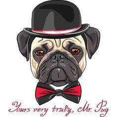 Hipster szkic wektorowych kolor płowy poważne pies rasy mops w kapeluszu i Muszka Zdjęcie Seryjne