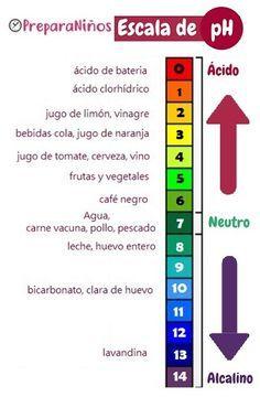 Pin En Microbiología