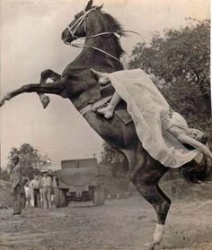 Vintage Circus Horse!