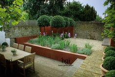 City courtyard garden. Decked patio. Table and chairs. Retaining wall. Irises plated in gravel. Topiarised lollipop Bay trees. Orange walls. Formal topiarised Buxus spheres in terracotta containers. Design Christopher Bradley - Hole. For Mr & Mrs Hail, Formal City Contemporary Containers Courtyards Decking Dining Gravel Hot colour Minimalist Paths Paving Perennials Raised beds/ terraced Seating Small gardens Terracotta containers Topiary Walls
