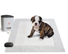 Dogs Pet Shop  Dog Gadgets  The Pavlovian Puppy Potty Trainer.  02/26/2017  The Pavlovian Puppy Potty Trainer.  This is the puppy pad that recognizes when a pet has relieved itself properly and dispenses a reward to encourage good habits  even when the owner isnt there to provide praise. Internal sensors in the mat detect moisture and send a wireless signal to the treat dispenser stocked with a dogs favorite kibble. When the dispenser delivers a bite-size reward (with or without the optional…