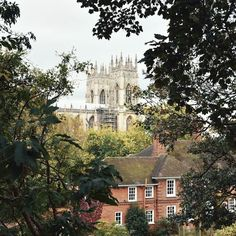 Views of York Minster wherever you look - when in York. . What a struggle it was to get out of bed this morning. Getting up in the dark is not natural I vote for sleeping until daylight appears  But seeing as I can't.... coffeeeeeeee!!  . Happy hump day!