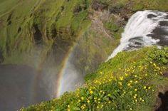 Skógafoss / Island